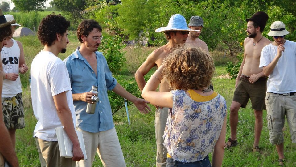 Teaching in the Food Forest
