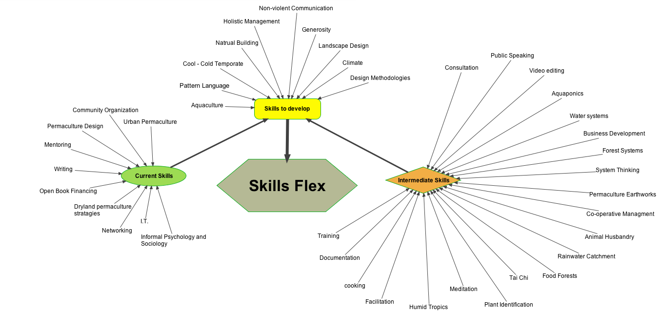 Skill Flex Mind Map