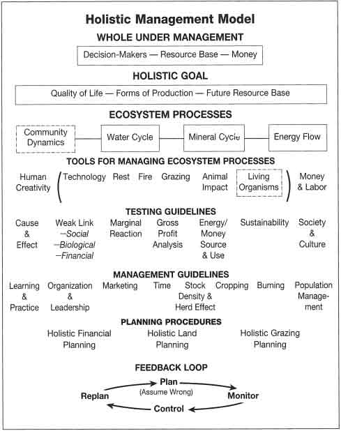 Framework for Holistic Decision Making